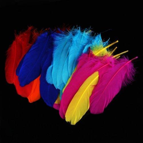 bolsa-de-plumas-feather-ganso-colores-variados-para-manualidades-72-pc