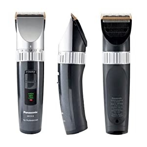 Beste Haarschneider: Panasonic ER 1510