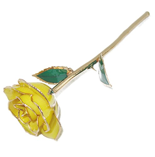 ZJchao Long Stem 24k Rose Dipped Rose Flower, Best Gift for Valentine's Day, Mother's Day, Anniversary and Birthday (Yellow)