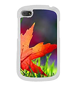 Beautiful Autumn Leaf 2D Hard Polycarbonate Designer Back Case Cover for BlackBerry Q10