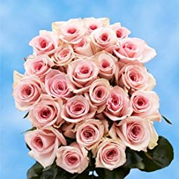 2 Dozen Fresh Cut Pink Roses | Extraordinary Pleasant! | Fresh Flowers Express Delivery | Perfect for Birthdays, Anniversary or any occasion.