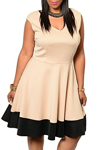 Dhstyles Women'S Plus Size Trendy Fit And Flare Color Block Date Dress-1X - Tan,Black