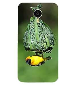 ColourCraft Bird and nest Design Back Case Cover for MEIZU M3 NOTE