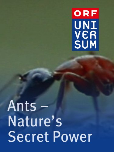 ants natures secret power Ants - natures secret power is currently unavailable to stream on-demand, but may be available on hulu with live tv depending on regional availability try live tv for free.