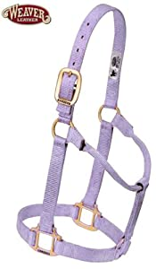 Original Non-Adjustable Nylon Halter Large 1100-1600 lbs