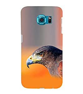 Lovely eagle 3D Hard Polycarbonate Designer Back Case Cover for Samsung Galaxy S6 Edge :: Samsung Galaxy Edge G925