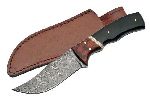 Szco Supplies Horn Handle Damascus Skinning Knife
