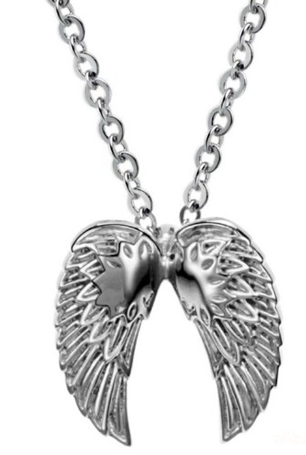 JBG Jewelry Necklace Fashion Titanium Steel Domineering Wings Special Cool Pendant Neckwear Chains For Men in a Nice Gift Box