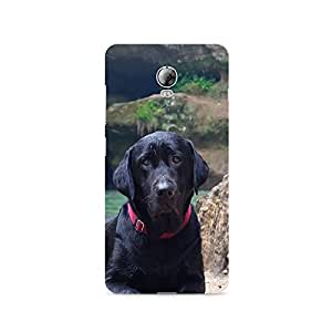 TAZindia Designer Printed Hard Back Case Mobile Cover For Lenovo Vibe P1