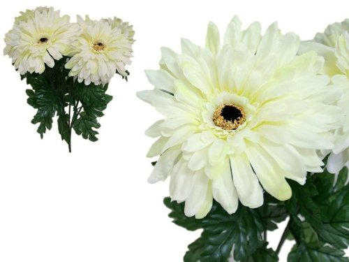 28 Cream Silk GERBERA Daisy Wedding Flowers Bushes