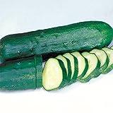 Cucumber Marketmore Certified Organic Seeds