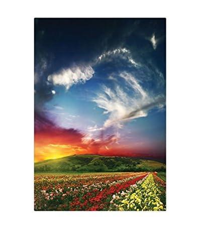 Best seller living Leinwandbild Sunset, Colorful Flowers