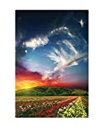 Best seller living Lienzo Sunset, Colorful Flowers