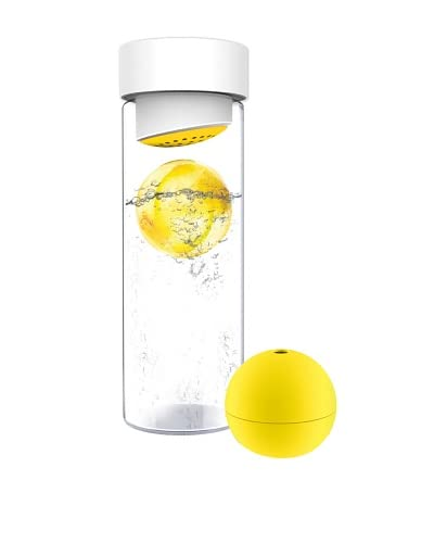 AdNArt Glass Water Bottle with Fruit Iceball Maker