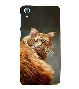 EPICCASE Narnia Cat Case Mobile Back Case Cover For HTC Desire 826 (Designer Case)