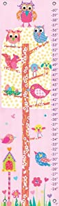Oopsy daisy Little Owls Growth Chart by Rachel Taylor, 12 by 42 Inches by Oopsy Daisy