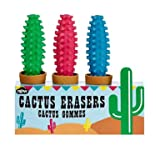Mini Cactus Erasers