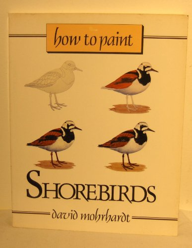 How to Paint Shorebirds: A Guide to Materials, Tools, and Technique
