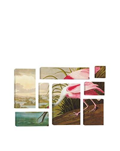 John James Audubon Roseate Spoonbill 8-Piece Canvas Print Set