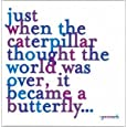 """Just When The Caterpillar Thought The World Was Over. Color Magnet"""