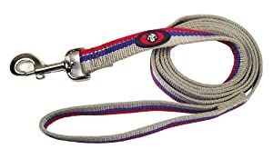 Hamilton Nylon Dog Lead with Swivel Snap and Reflective Threads, 1-Inch by 4-Feet, Grey/Blue/Red