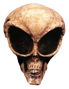 Alien Skull Prop