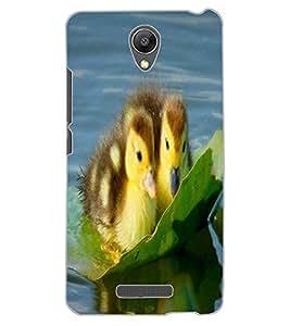 ColourCraft Lovely Ducks Design Back Case Cover for XIAOMI REDMI NOTE 2 PRIME