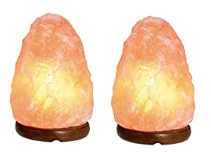 2 X Natural Therapeutic Himalayan Salt Lamp by Fizzy's