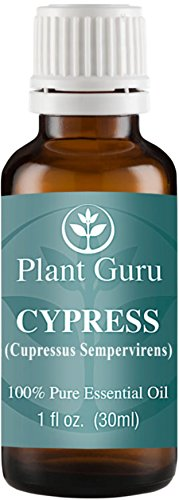 Cypress Essential Oil. 30 ml (1 oz) 100% Pure, Undiluted, Therapeutic Grade.