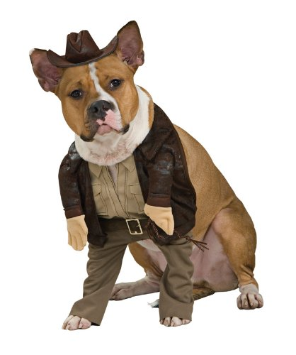 Indiana Jones Pet Costume, Large - 1
