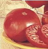 コンテストで優勝した品種 糖度が高い砂糖トマト 4粒