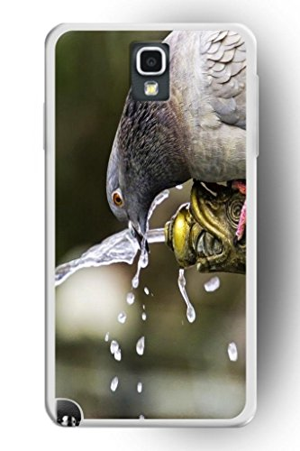 Sprawl Funny Cute Samsung Galaxy Note 3 Case Wild Animal Style Hard Skin Cover Shell -- Pigeon Drink Water