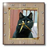 dpp_180847_2 Beverly Turner Cat Photography - Close up of Black Cat on Patio in Frame with Stars - Wall Clocks - 13x13 Wall Clock