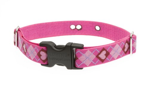 Lupine 1-Inch Puppy Love 16-24-Inch Containment Collar Strap For Large Dogs