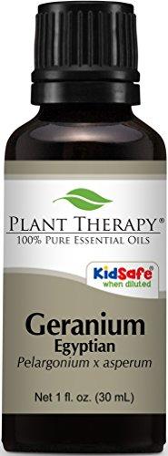 Geranium Egyptian Essential Oil 30 ml (1 oz) 100% Pure, Undiluted, Therapeutic Grade