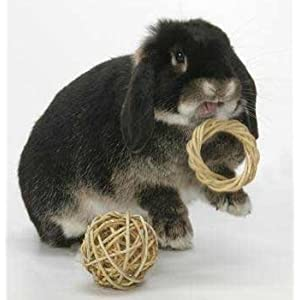 Click to buy Rabbit Toy: Peter's Rabbit and Small Animal Chew Ring from Amazon!
