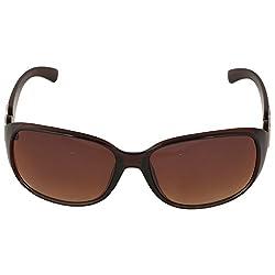 Eyeland Non-Polarized Oval Sunglasses (Brown, EYE236)