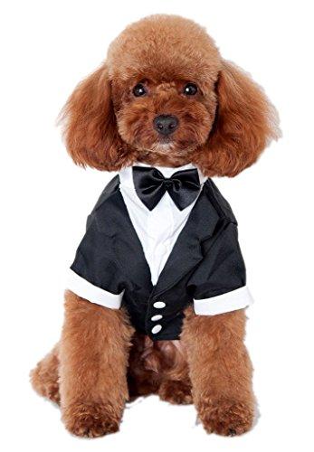 pet-lesor-schwarz-hund-smoking-puppy-hund-hochzeits-kleider-kostum-4-brust52cm-hals35cm-ruckenlange3