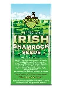 Official Irish Shamrock Seeds