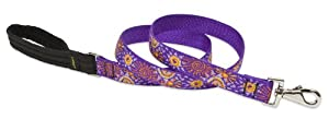 Lupine 1-Inch Sunny Days Dog Lead, 6-Feet by Lupine