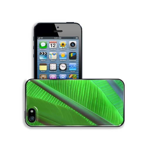 Green Leaf Sheet Macro Nature Apple Iphone 5 / 5S Snap Cover Premium Aluminium Design Back Plate Case Customized Made To Order Support Ready 5 Inch (126Mm) X 2 3/8 Inch (61Mm) X 3/8 Inch (10Mm) Msd Iphone_5 5S Professional Metal Case Touch Accessories Gra front-970436