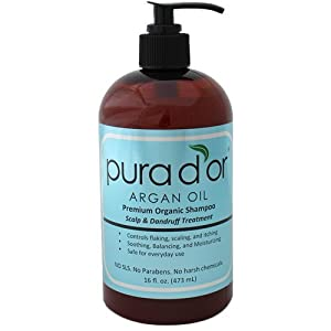 Pura D'or Argan Oil Premium Organic Shampoo Scalp & Dandruff Treatment (16 Ounce)