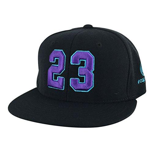 Number #23 Black Purple Aqua Snapback Hat Cap X Air Jordan Grape Hornets (Womens Jordan Sneakers Grape 6 compare prices)
