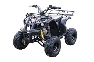 Amazon.com : Kandi USA MDL-GA003-2 110cc Youth Utility ATV