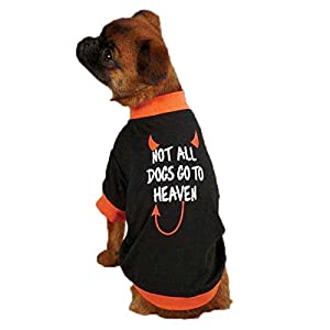 "Casual Canine ""Not All Dogs"" Tee for Pets, X-Large, Black"