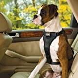 Tru-Fit Smart Harness with Seat Belt Loop - Black, Small: For dogs 10-25 lbs. - Frontgate
