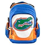NCAA Florida Gators Premium Backpack at Amazon.com