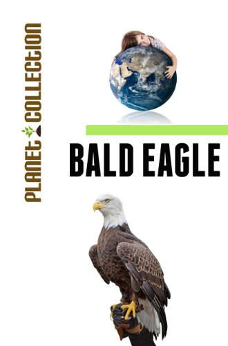 Bald Eagle: Picture Book (Educational Children's Books Collection) - Level 2 (Planet Collection)