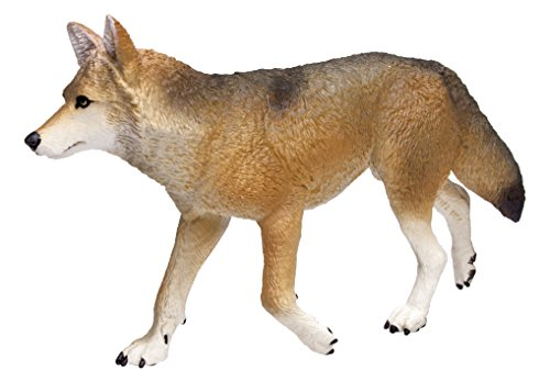 Safari Ltd. Wild Wilderness Coyote