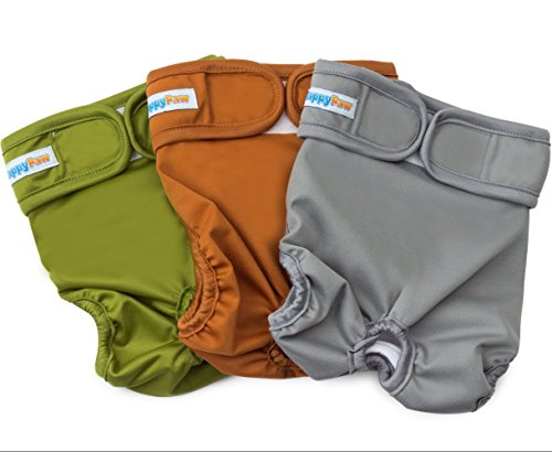 Reusable Washable Dog Diapers (3 Pack) - Durable Dog Wraps for both Male and Female Dogs - Premium Quality (X-Large) (Pictures Of Women Peeing compare prices)